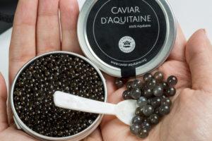 Caviar d'Aquitaine noel 2018