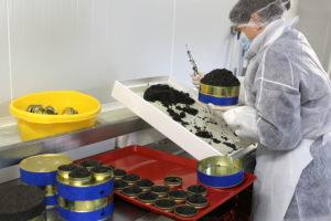 Caviar Perlita - Production